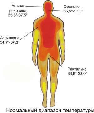 нормальная температура тела
